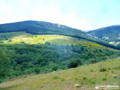 Chorro,Chorrera San Mamés_Valle del Lozoya;sierra norte de guadalajara las presillas rascafria foto